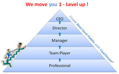 Professional - Teamplayer- Manager - Director - CEO